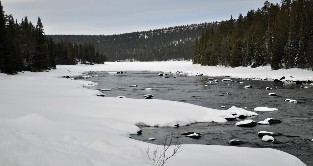 Sjöforsen från den 11 mars där snart våren kommer göra sitt