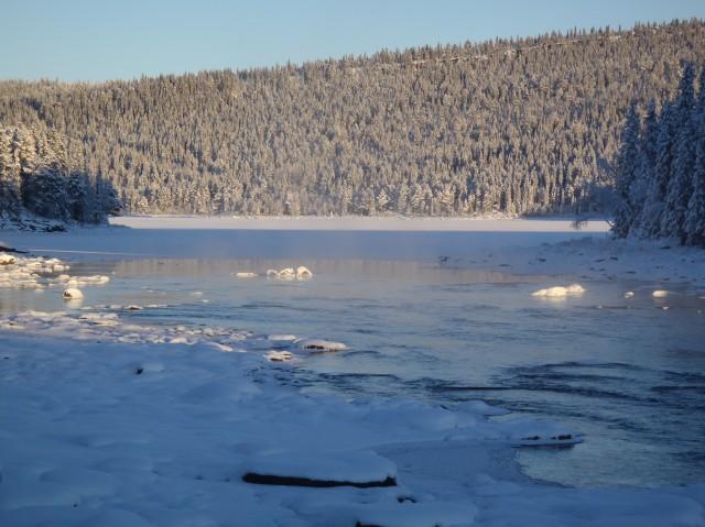Sjöforsen vinter