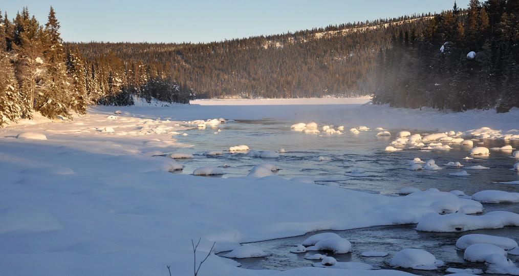 Äntligen solen tillbaka vid Sjöforsen