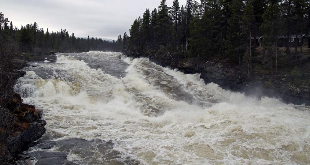 Vårflod den 22 maj vid Vindelåforsen