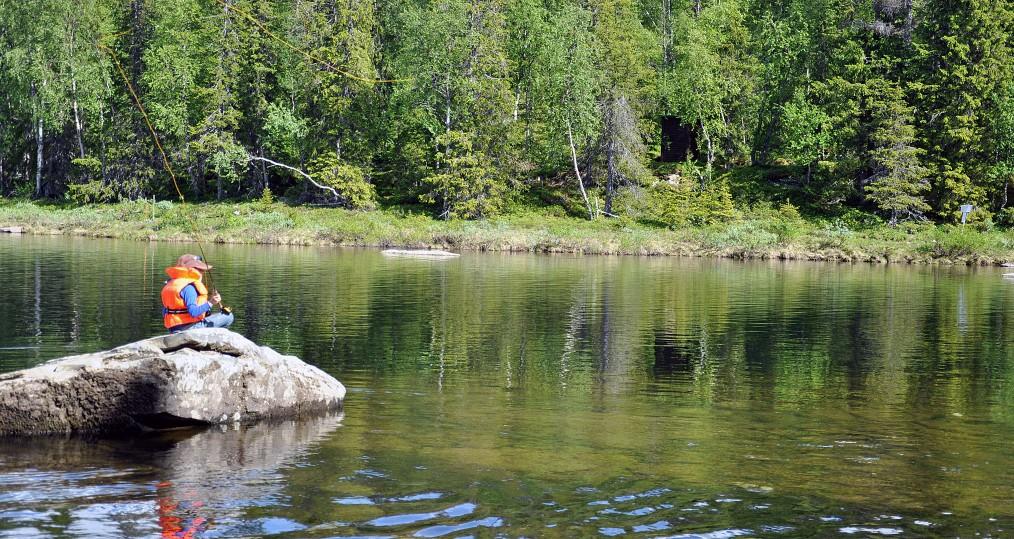 Sjöforsnacken den 16 juni