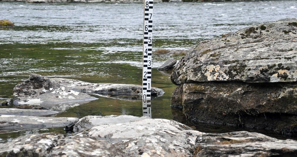Vattenstånd den 14 aug vid Sjöforsen