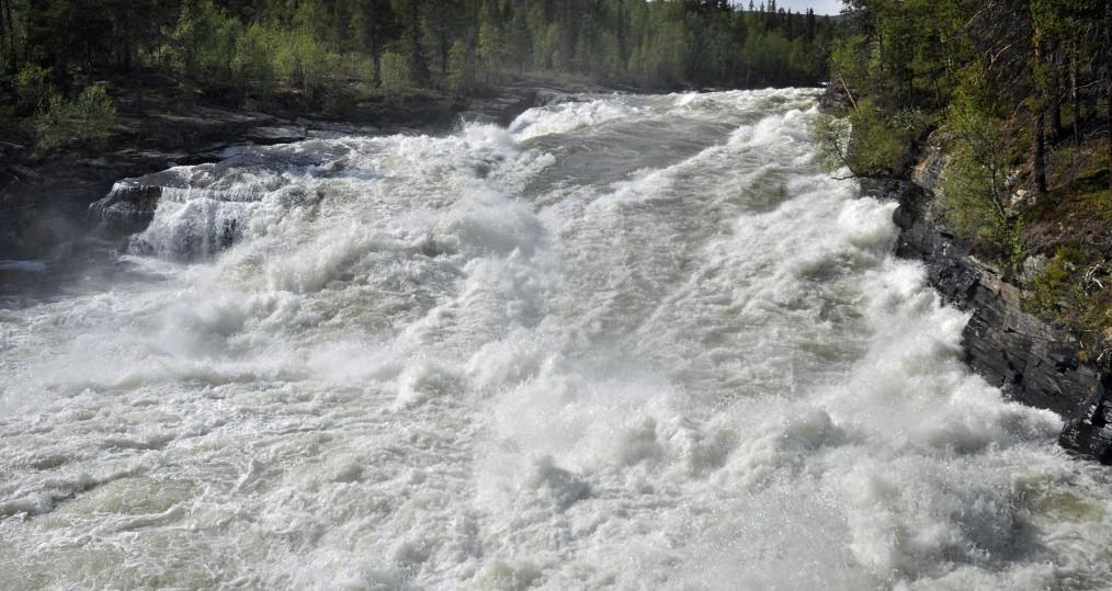Vindelåforsen från i dag där mycket vatten kommer