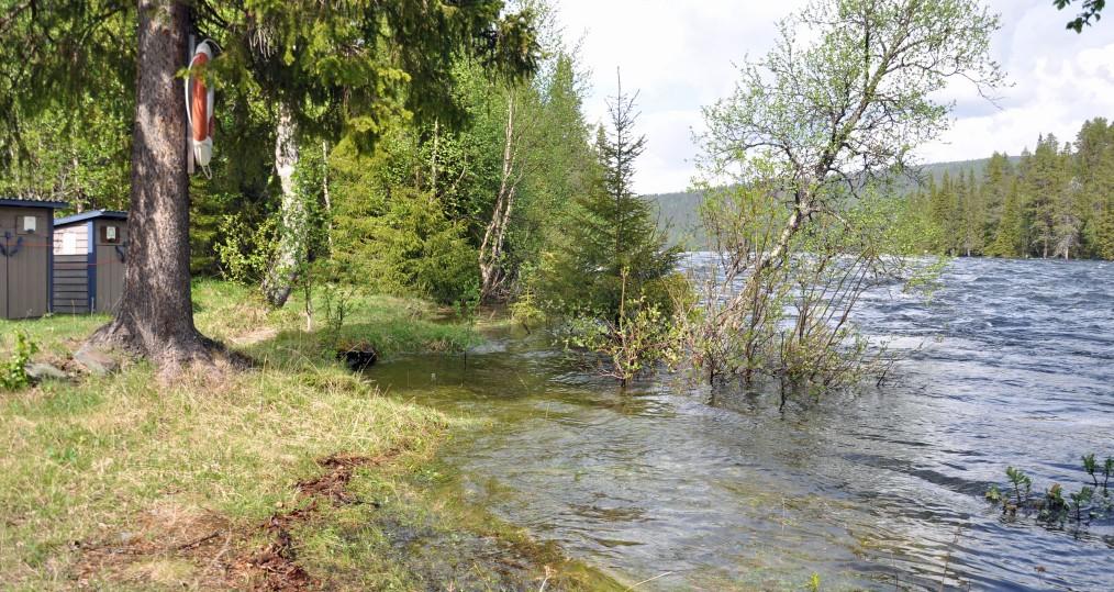Vattennivån vid Sjöforsen har varit ganska hög