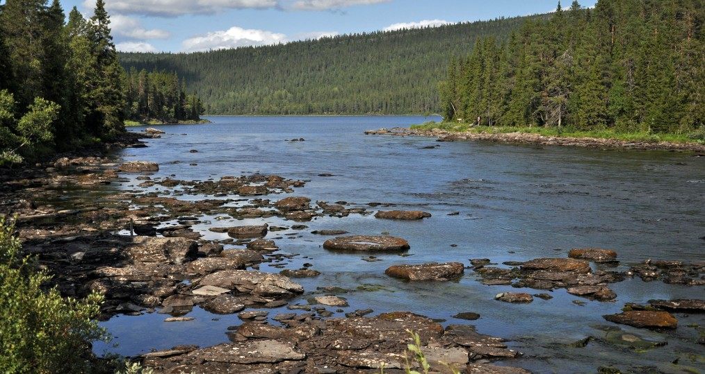 Lågt vattenstånd vid Vindelälven