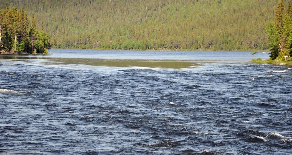 Bild från Sjöforsen där älven är hög